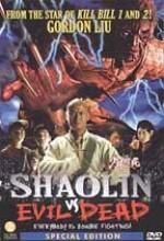 Shaolin Vs Evil Dead (2004) afişi