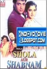 Shola Aur Shabnam (1992) afişi