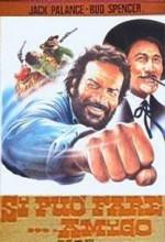 Si Può Fare... Amigo (1972) afişi