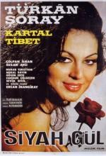 Siyah Gül (1966) afişi