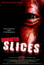 Slices (2008) afişi