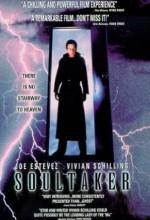 Soultaker (1994) afişi