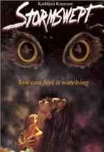 Stormswept (ı) (1995) afişi