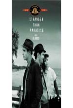 Stranger Than Paradise (1984) afişi