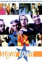Sugar Town (1999) afişi