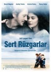 Sert Rüzgarlar (2011) afişi