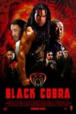 Siyah kobra
