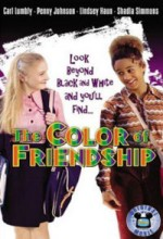The Color Of Friendship (2000) afişi
