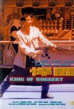 The King Of Robbery (1996) afişi