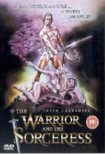 The Warrior And The Sorceress (1984) afişi