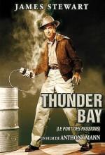 Thunder Bay (1953) afişi