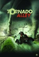 Tornado Alley (2011) afişi