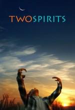 Two Spirits (2009) afişi
