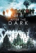 Karanlıktan Sonra (2013) afişi