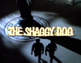 The Shaggy Dog!! (1994) afişi