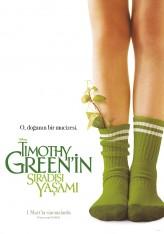 Timothy Green'in Sıradışı Yaşamı (2012) afişi