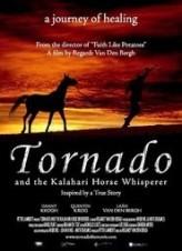 Tornado ve Atlara Fısıldayan Adam  afişi
