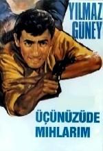 Üçünüzü De Mıhlarım (1965) afişi