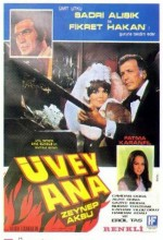 Üvey Ana (1971) afişi