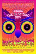 EDC 2013: Under the Electric Sky (2014) afişi