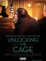 Unlocking The Cage (2016) afişi