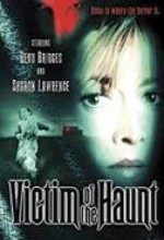 Victim Of The Haunt (1996) afişi