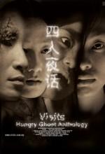 Visits (2004) afişi