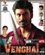Venghai (2011) afişi