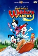 Wakko's Wish
