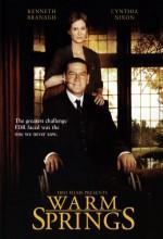 Warm Springs (2005) afişi
