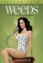 Weeds (2008) afişi