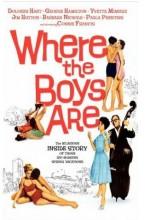 Where The Boys Are (1960) afişi