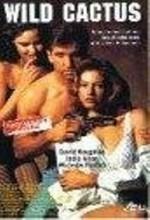 Wild Cactus (1993) afişi