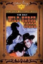 Wild Horse Mesa (ı) (1947) afişi