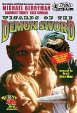 Wizards Of The Demon Sword (1991) afişi
