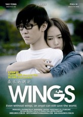 Wings (2012) afişi