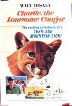 Yalnız Puma Charlie (1967) afişi