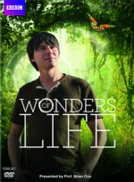 Yaşamın Harikaları (2013) afişi
