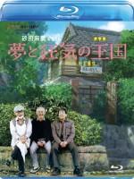 Düşlerin ve Çılgınlığın Krallığı (2013) afişi