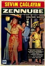 Zennube (1965) afişi