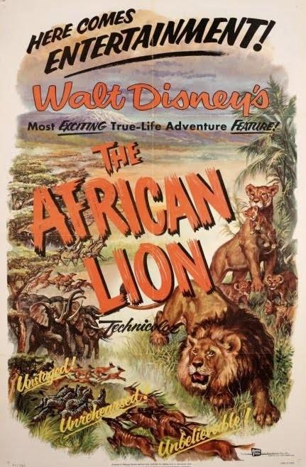Afrikalı Aslan