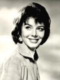Janet Munro profil resmi