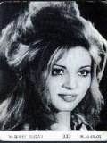 Müşerref Tezcan profil resmi