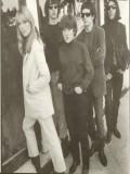 The Velvet Underground profil resmi
