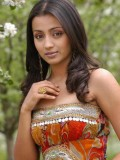 Trisha Krishnan profil resmi