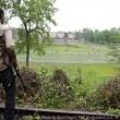 the walking dead sezon 3 Resimleri