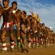Amazon'un Gizli Şehirleri Resimleri