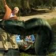 Razortooth Resimleri