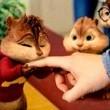 Alvin ve Sincaplar 2 Resimleri 7