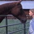 Atlara Fısıldayan Adam Resimleri